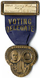 National Townsend Convention / Voting Delegate
