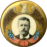 Theodore Roosevelt: Classic eagle and flags pinback