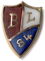 Blaine and Logan: Unusual colored glass badge